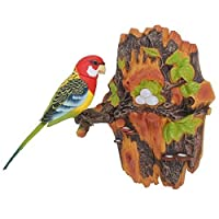 Chirping & Dancing Bird- Color Vary - Motion Sensor by SkyMaster