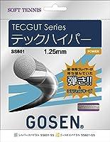 GOSEN(ゴーセン) テックハイパー テックハイパーTECGUT TECHYPER SS601SS 1805 【メンズ】【レディース】 SS.シルバースパイラル -