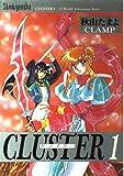 Cluster / 秋山 たまよ のシリーズ情報を見る