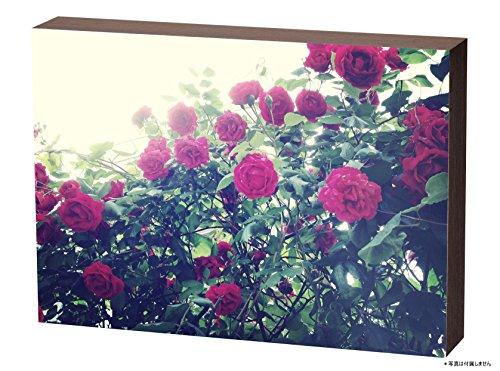 FUJIFILM 『壁アルバム』用フォトパネル shacolla(シャコラ)BOXタイプ ブラウンウッド シヤコラ BOX L BR-W