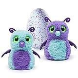 うまれて! ウーモ パープル/ティール おもちゃ ペット - Hatching Egg Burtle Purple/Teal 【並行輸入品】