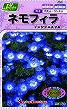 カネコ種苗 草花タネ760 ネモフィラ インシグニスブルー 10袋セット