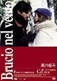 風の痛み Silvio Soldini [DVD]