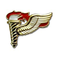 アメリカ陸軍 技能章 - 降着誘導員章 サービスドレス胸用 米軍 ミリタリーバッジ