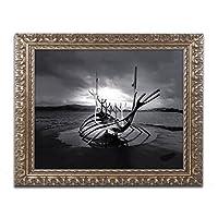 商標Fineアートpsl0841-g1114F Sun Voyager by Philippe sainte-laudy 11x14 PSL0841-G1114F