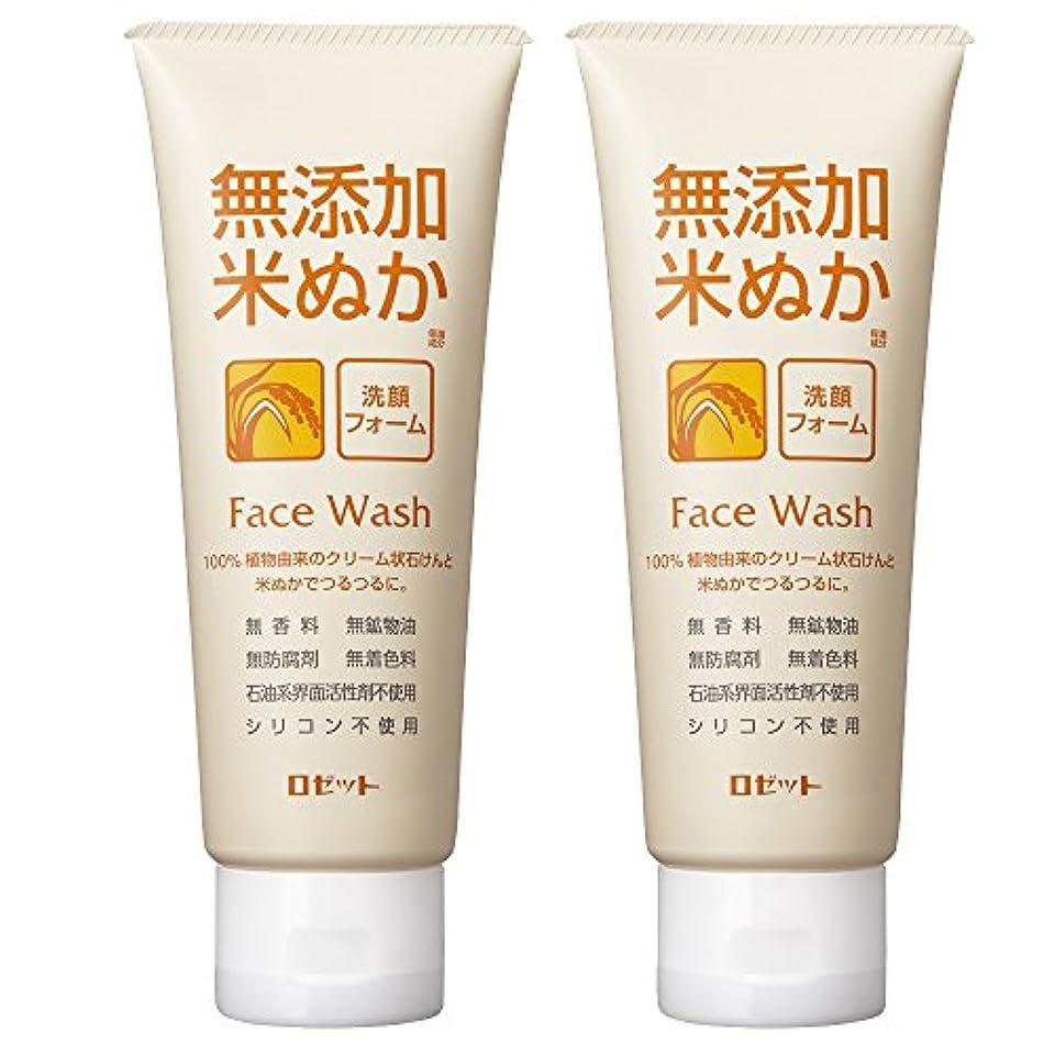 歴史パブ注釈を付けるロゼット 無添加米ぬか 洗顔フォーム 140g×2個パック AZ