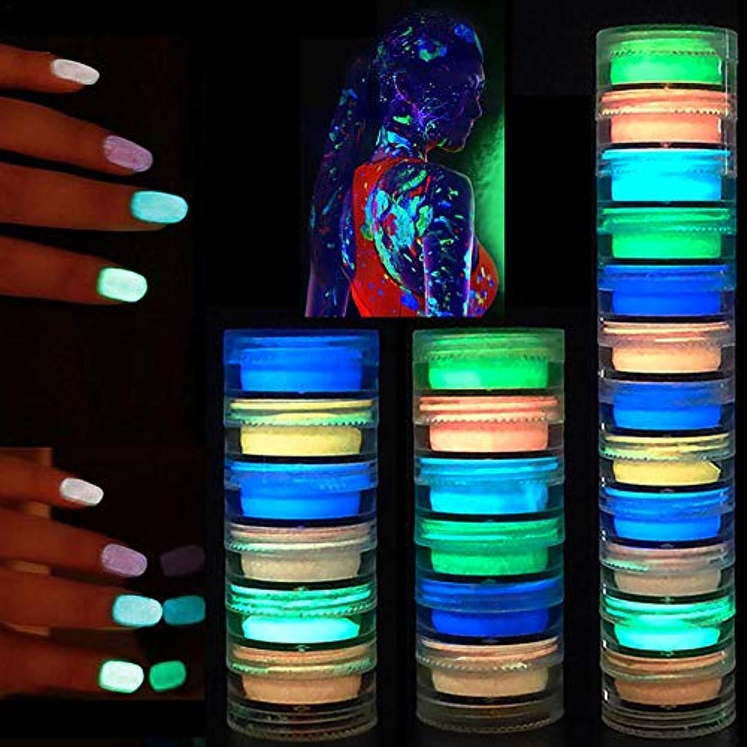 記憶に残る広い精査する12色 ハロウィン 塗装ネイル ルミナスパウダー DIY ネオン 蛍光体 ネイル グリッター