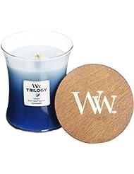 Wood Wick ウッドウィック トリロジージャーキャンドルMサイズ クローズライン