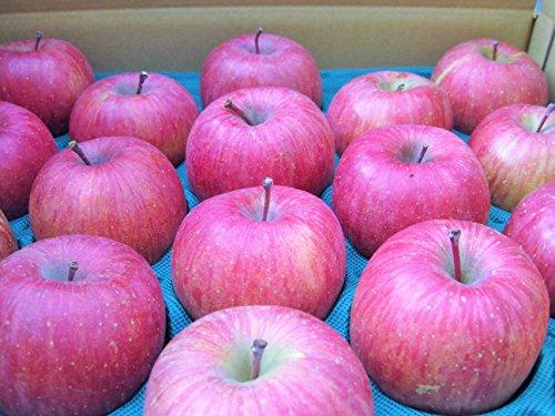 長野県産 生産農家直送りんご サンふじ 中級ランク(秀) 贈答向き&自家用向き 10〜20玉 約5kg箱