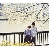 サニーデイ・サービス BEST 1995-2000