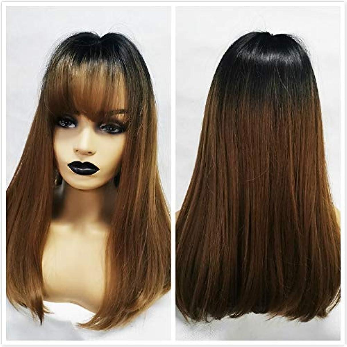 上陸安全性中に女性の好きなウィッグ 黒人女性のための前髪とALAN EATON合成ウィッグロングストレートレイヤー髪型オンブルブラックブラウンブロンドグレー灰のフルウィッグ (Color : Lc167 1)