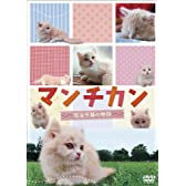 マンチカン ~短足子猫の物語~ [DVD]