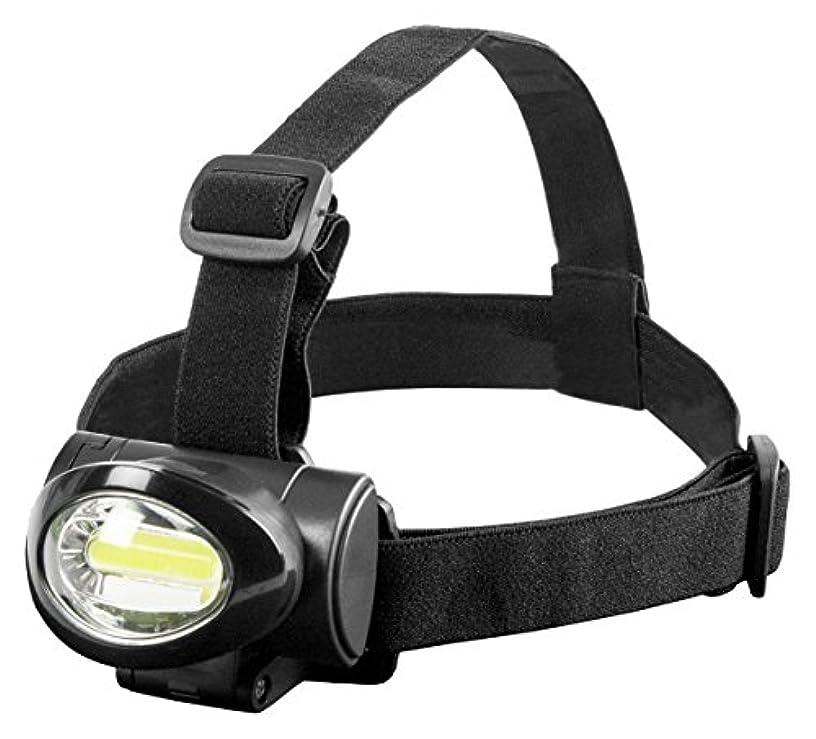 ナインへコースゴミ箱を空にするTAKAMIYA(タカミヤ) H.B CONCEPT COB型LED ヘッドライト JL-1039