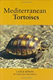 Mediterranean Tortoises 画像