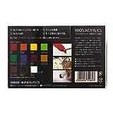 パジコ プロスアクリックス11色セット 画像