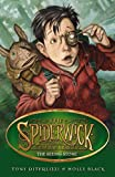The Seeing Stone. Tony Diterlizzi and Holly Black (SPIDERWICK CHRONICLE)