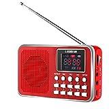 Best イオンオーディオを購入スピーカー - SOONHUA FM/AMラジオ MP3プレーヤー スピーカーラジオ ポータブルラジオ USB充電式 高感度 スピーカー付き LEDライト Review