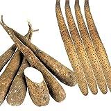 長いも種芋 人気の長いも食べ比べセット 2種15個