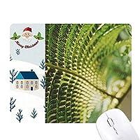 植物の葉の自然の写真 サンタクロース家屋ゴムのマウスパッド