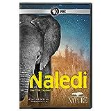 Nature: Naledi: One Little Elephant [DVD] [Import]