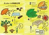 チョコレート語辞典: チョコレートにまつわることばをイラストと豆知識で甘~く読み解く 画像