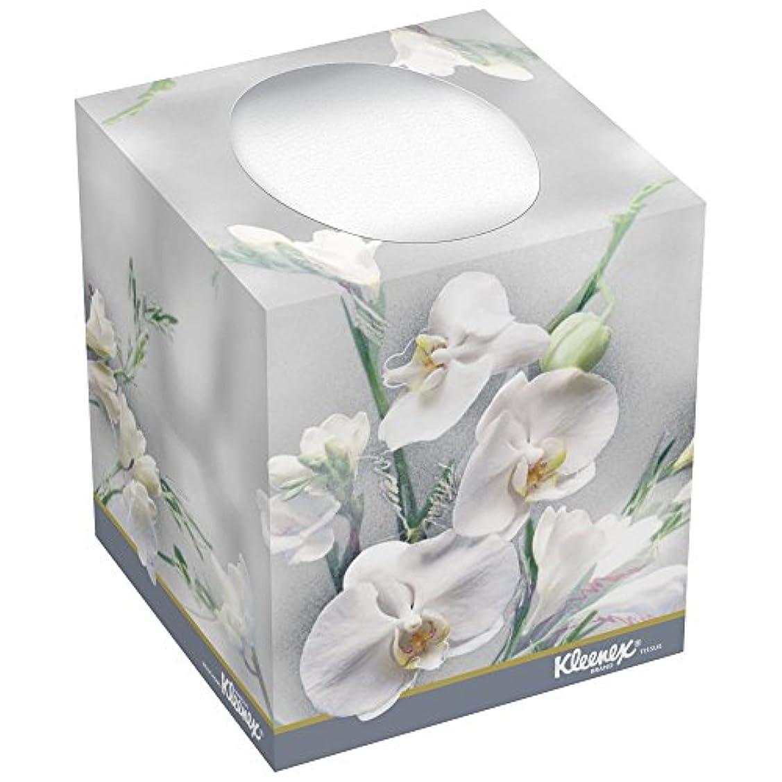 ベーカリー強化宇宙のKLEENEX BOUTIQUE Two-Ply White Facial Tissue, 95 Tissues/Box, 36 Boxes/Carton (並行輸入品)