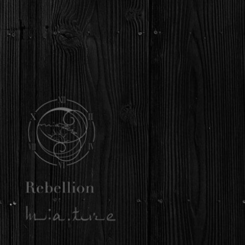 『Rebellion』のトップ画像