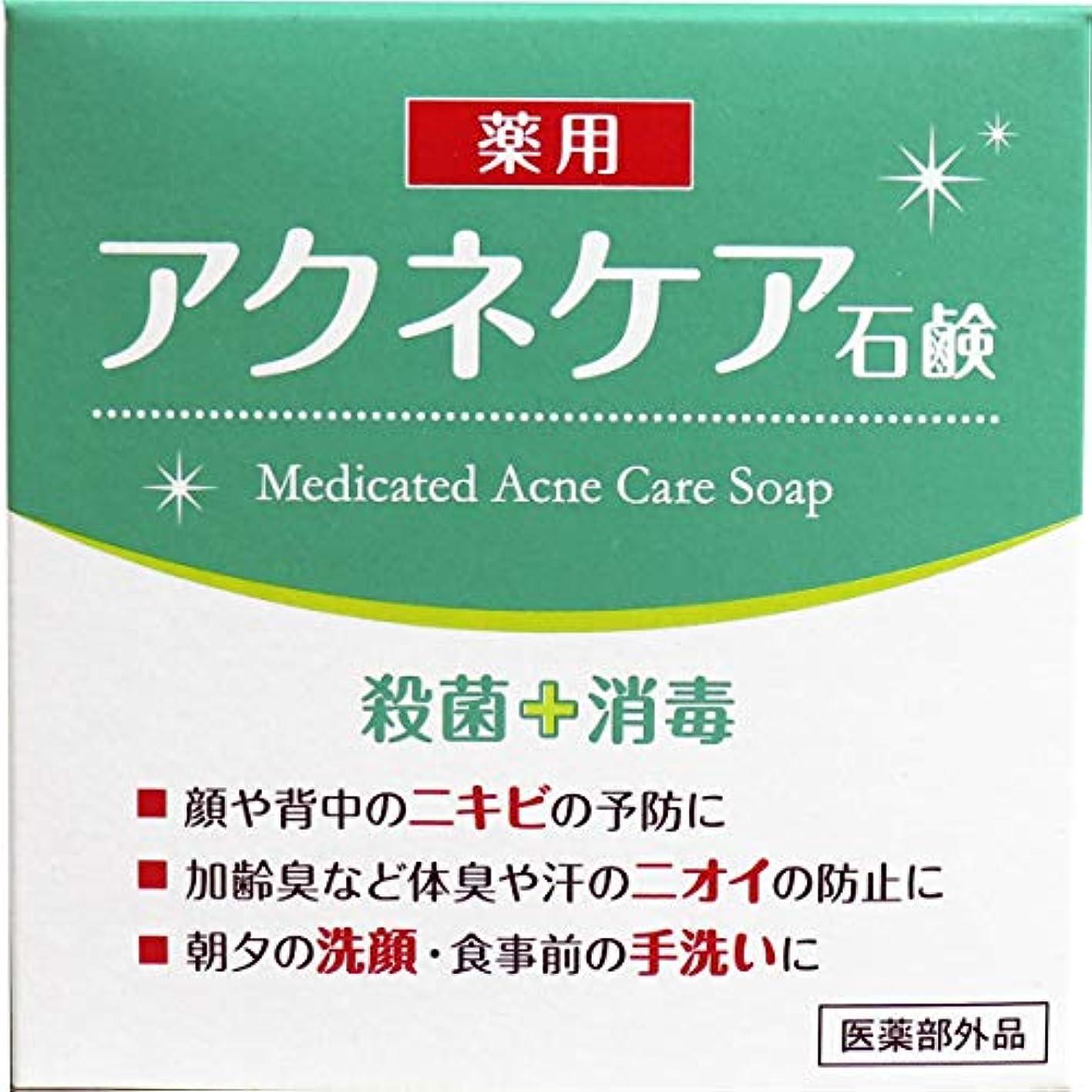 活性化する専門できないクロバーコーポレーション 薬用 アクネケア 石けん 80g E540405H