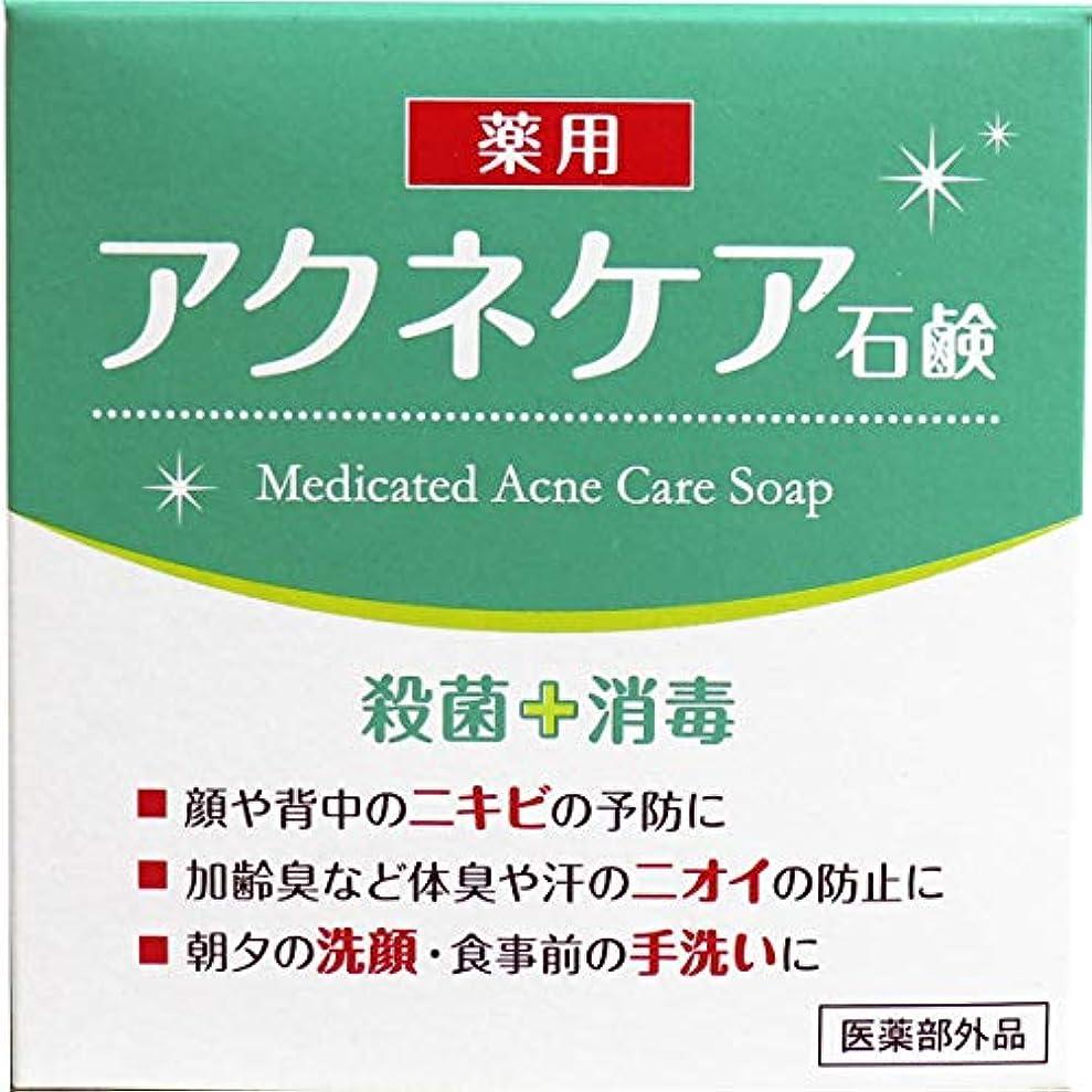 香港ずるい恐怖症クロバーコーポレーション 薬用 アクネケア 石けん 80g E540405H