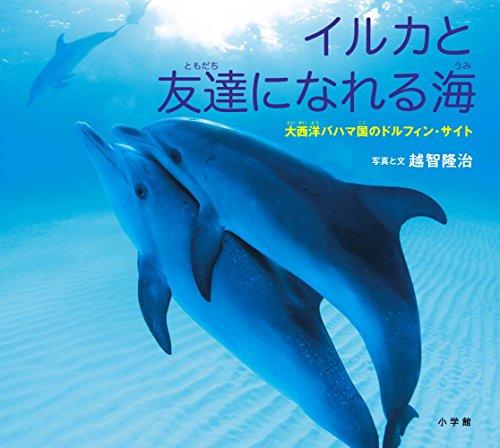 イルカと友達になれる海: 大西洋バハマ国のドルフィン・サイト (小学館の図鑑NEOの科学絵本)の詳細を見る