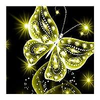 5Dダイヤモンド刺繍DIYクロスステッチキット、蝶の絵画
