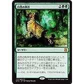 【シングルカード】EMA)[JPN]自然の秩序/緑/M/177/249