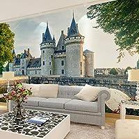 Ljjlm ヨーロッパの城の写真の壁紙の壁画のステッカー3Dのリビングルームの寝室の家の装飾の壁紙論文自己接着壁紙-260X180CM
