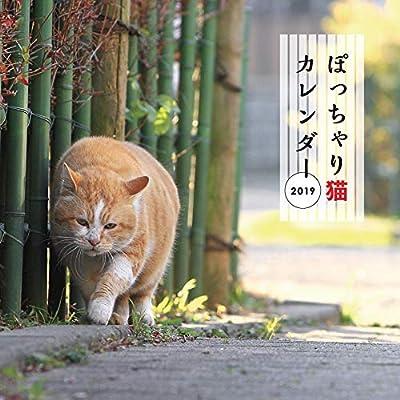 ぽっちゃり猫カレンダー2019