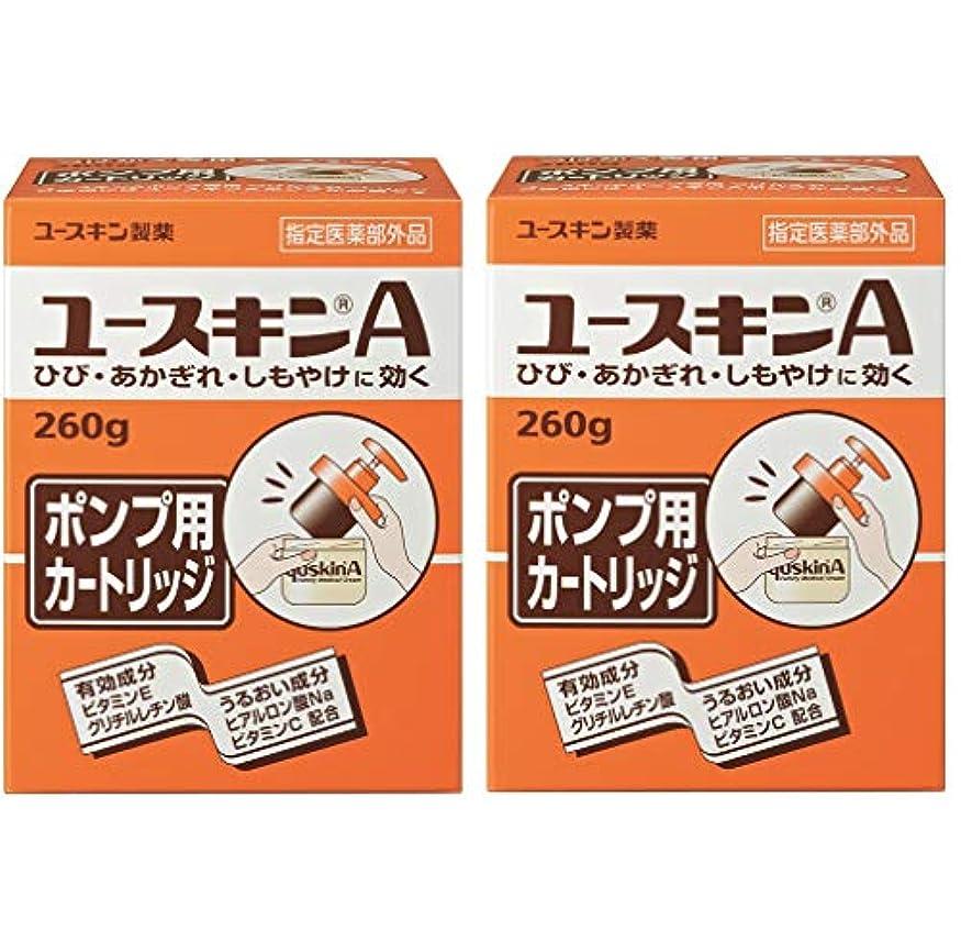 キャラクターたらい不安定な【医薬部外品】 ユースキンA ポンプ用 カートリッジ 詰替え用 260g×2個