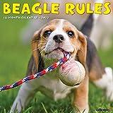 Beagle Rules 2022 Wall Calendar