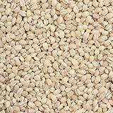 丸麦 - 国産 (500g)