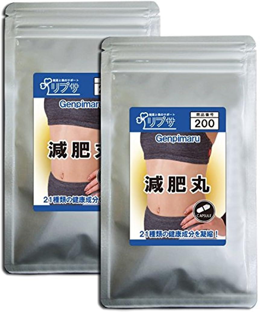 立ち寄る霧敵対的減肥丸 約3か月分×2袋 C-200-2