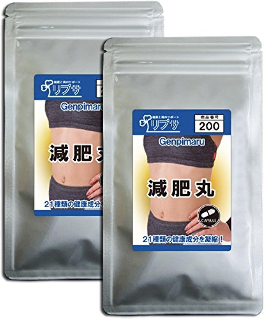 サイレントしなやかな摩擦減肥丸 約3か月分×2袋 C-200-2