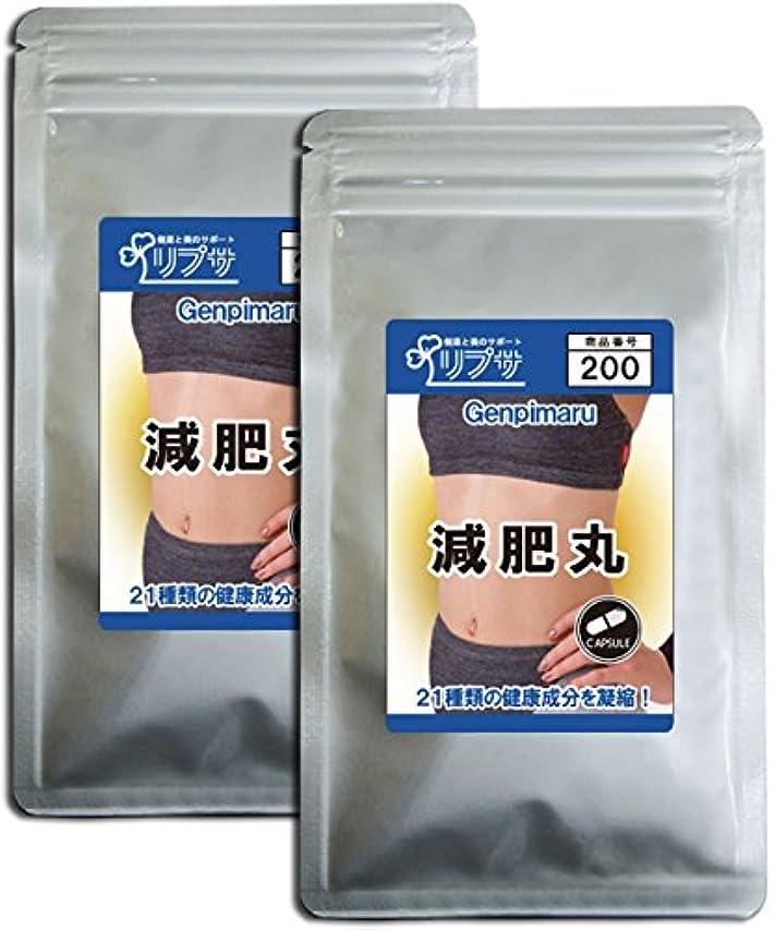 貯水池ドロー凝視減肥丸 約3か月分×2袋 C-200-2