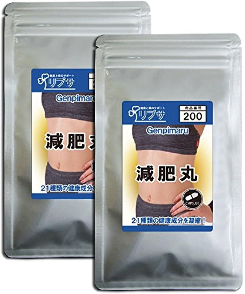 愛人アジャ星減肥丸 約3か月分×2袋 C-200-2