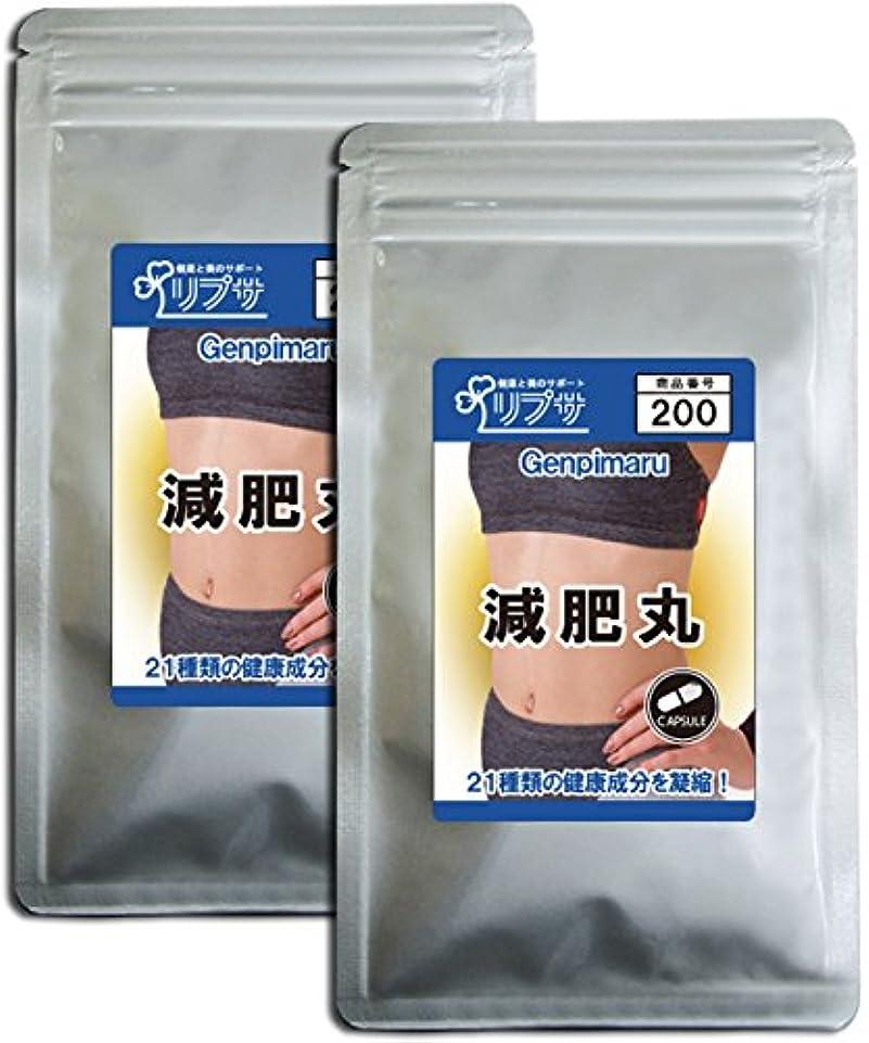 計算最も遠いプレゼンター減肥丸 約3か月分×2袋 C-200-2