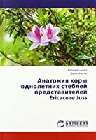 Анатомия коры однолетних стеблей представителей Ericaceae Juss
