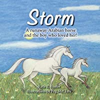 Storm: A runaway Arabian horse and the boy who loved her!
