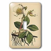 3drose LSP 204758_ 1印刷のクリスマスローズ植物から1700Single切り替えスイッチ