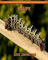 Raupe: Tolle Bilder & Wissenswertes ueber Tiere in der Natur