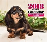 2018年ミニカレンダー ミニチュア・ダックスフンド ([カレンダー])