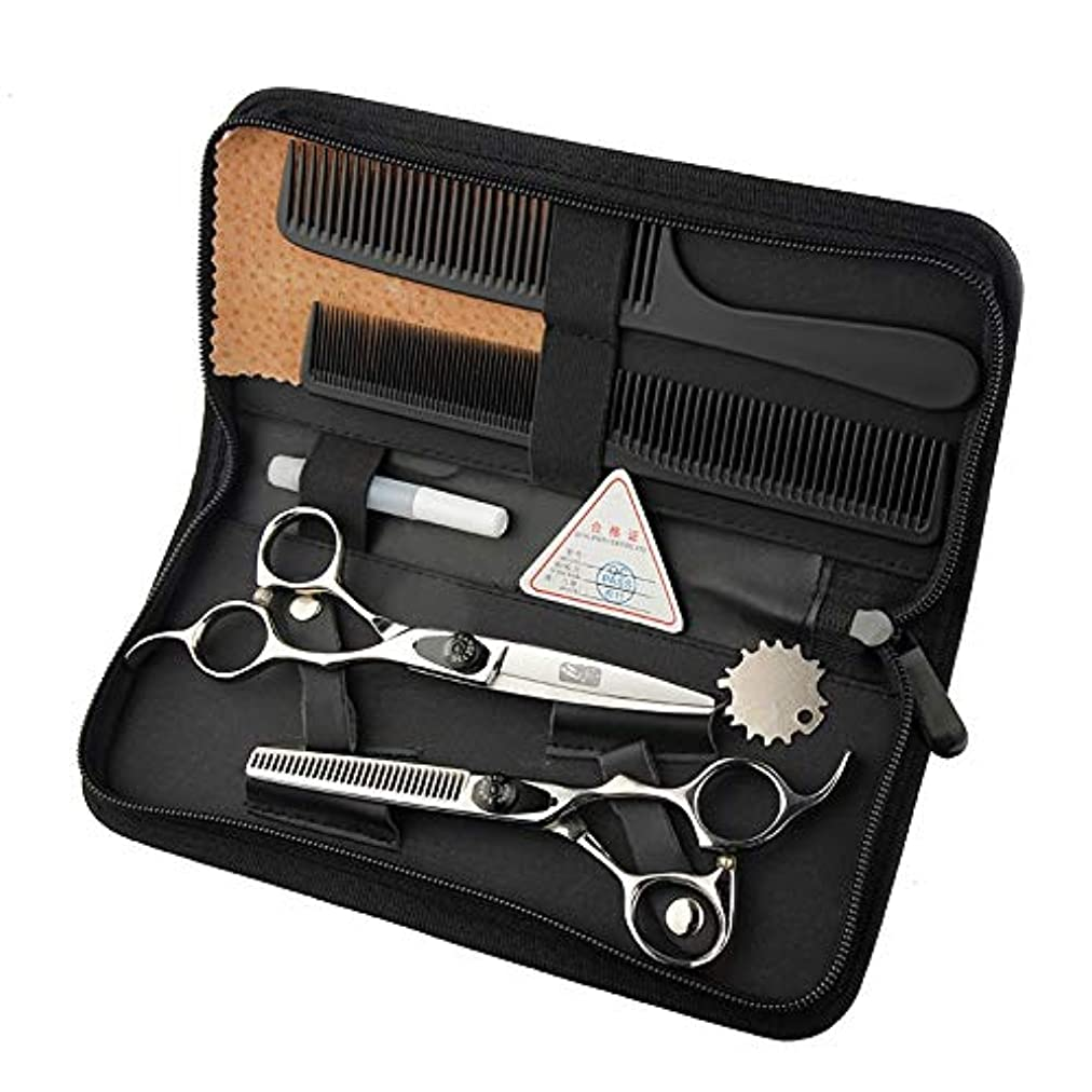 プラスチックハイブリッド勝つGoodsok-jp 6インチの美容院の専門のヘアカットの平らなはさみの歯のはさみセットの上限の専門の理髪ツール (色 : Silver)
