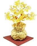 JapaNice(ジャパナイス) 招財樹 金のなる木 シトリン 黄水晶 BC550