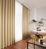 アスワン 抗ウイルス機能も備えたカーテン カーテン1.5倍ヒダ E6269 幅:150cm ×丈:130cm (2枚組)オーダーカーテン